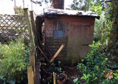 Shed before work started with screen